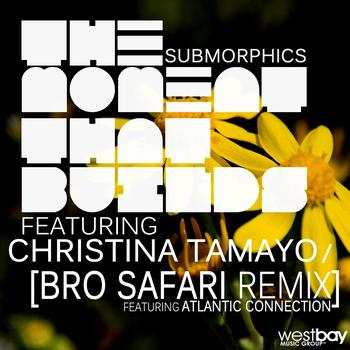 Submorphics - The Moment that Builds