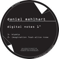 Daniel Mehlhart - digital notes 1