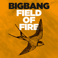 Bigbang - Field Of Fire