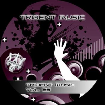 Various Artists - Trident Music Volume 29