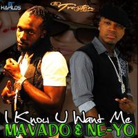 Mavado & Ne-Yo - I Know U Want Me [Remix]
