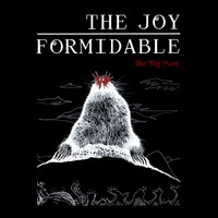 The Joy Formidable - The Big More