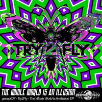 Try2fly - Try2Fly-The Whole World Is An Illusion EP