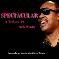 Spectacular - A Tribute To Stevie Wonder