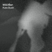 Kate Bush - Wild Man