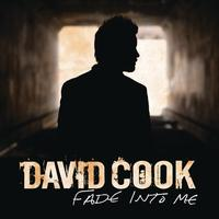 David Cook - Fade Into Me (Radio Edit)