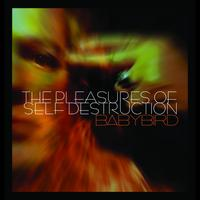 Babybird - The Pleasures of Self Destruction