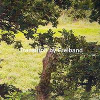 Freiband - Transition - Single
