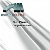 D.J. Pierre - Can you touch me