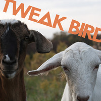 Tweak Bird - Forget 'Em
