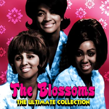 The Blossoms - The Ultimate Collection