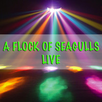 A Flock Of Seagulls - A Flock Of Seagulls - Live