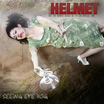 Helmet - Seeing Eye Dog