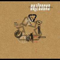 Buzzcocks - Flat Pack Philosophy