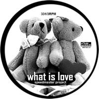Speedmaster Project - What Is Love 2007