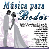 The Wedding Band - Música para Bodas