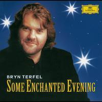 Bryn Terfel - Some Enchanted Evening. The Best Of The Musicals