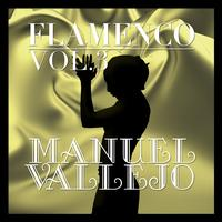 Manuel Vallejo - Flamenco: Manuel Vallejo Vol.3