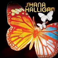 Shana Halligan - Paper Butterfly
