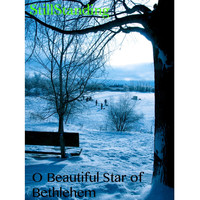 Still Standing - O Beautiful Star of Bethlehem