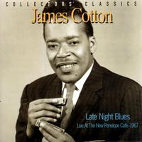 James Cotton - Late Night Blues