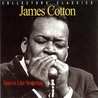 James Cotton - Seems Like Yesterday
