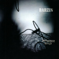 Barzin - Just More Drugs