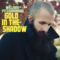 William Fitzsimmons - Gold in the Shadow (Deluxe Version)