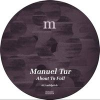Manuel Tur - About To Fall