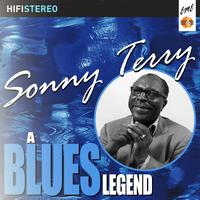 Sonny Terry - Sonny Terry A Blues Legend