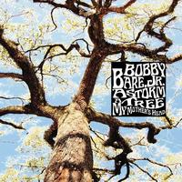 Bobby Bare Jr. - A Storm - A Tree - My Mother's Head