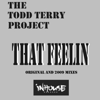 The Todd Terry Project - That Feelin