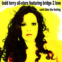 Todd Terry All Stars - Can't Fake the Feeling