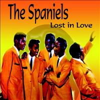 The Spaniels - Lost In Love