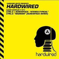 Ctrl-Z - Hardwired Album Sampler 1
