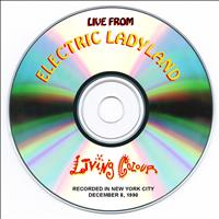 Living Colour - Live from Electric Ladyland