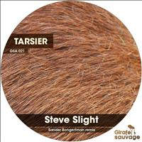 Steve Slight - Tarsier