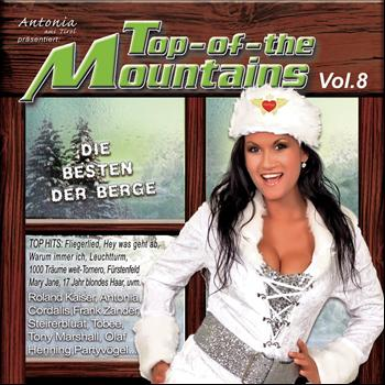 Various Artists - Top of the Mountains Vol. 8