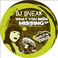 DJ Sneak - What You Been Missing