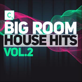 Various Artists - Big Room House