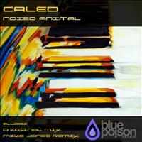 Caled - Noizo Animal