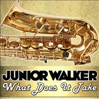 Junior Walker - What Does It Take