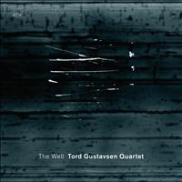 Tord Gustavsen Quartet - The Well