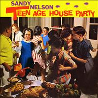 Sandy Nelson - Teenage House Party