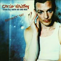 Chris Whitley - Perfect Day