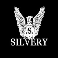 Silvery - Action Force / The Nod