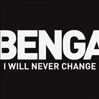 Benga - I Will Never Change (2012)