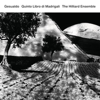 The Hilliard Ensemble - Gesualdo: Quinto Libro di Madrigali