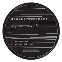 Daniel Mehlhart - digital notes 3