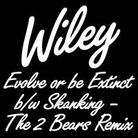 Wiley - Evolve or be Extinct b/w Skanking - The 2 Bears Remix